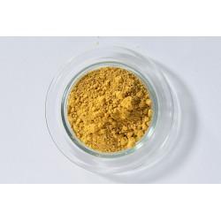 Goldocker (ockergelb)