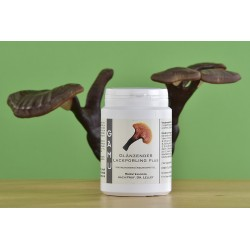 Glänzender Lackporling Kapseln mit Vitaminen