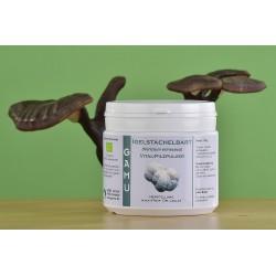 Igelstachelbart/Hericium Pilzpulver