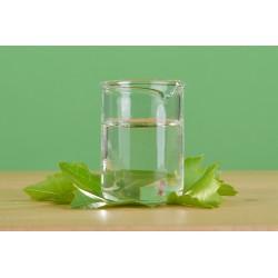 Haarchitin HT (Chitosan) Chitin liquid